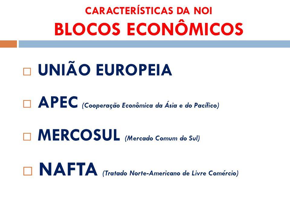 CARACTERÍSTICAS DA NOI BLOCOS ECONÔMICOS