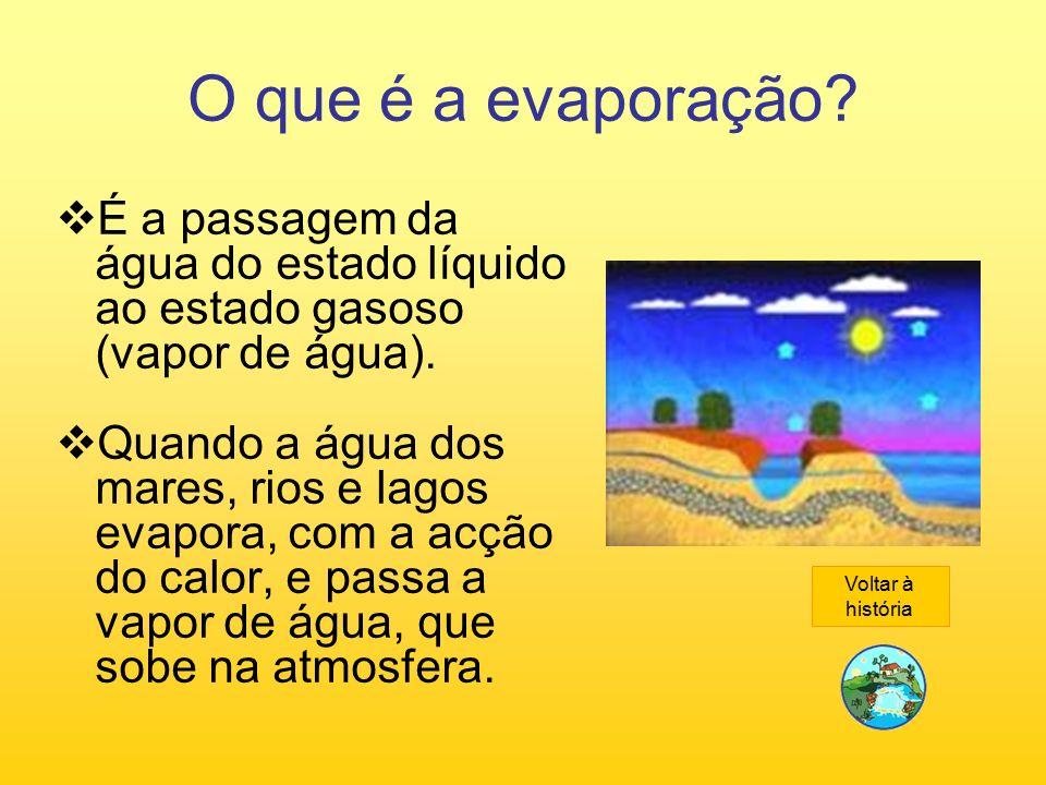 O que é a evaporação É a passagem da água do estado líquido ao estado gasoso (vapor de água).