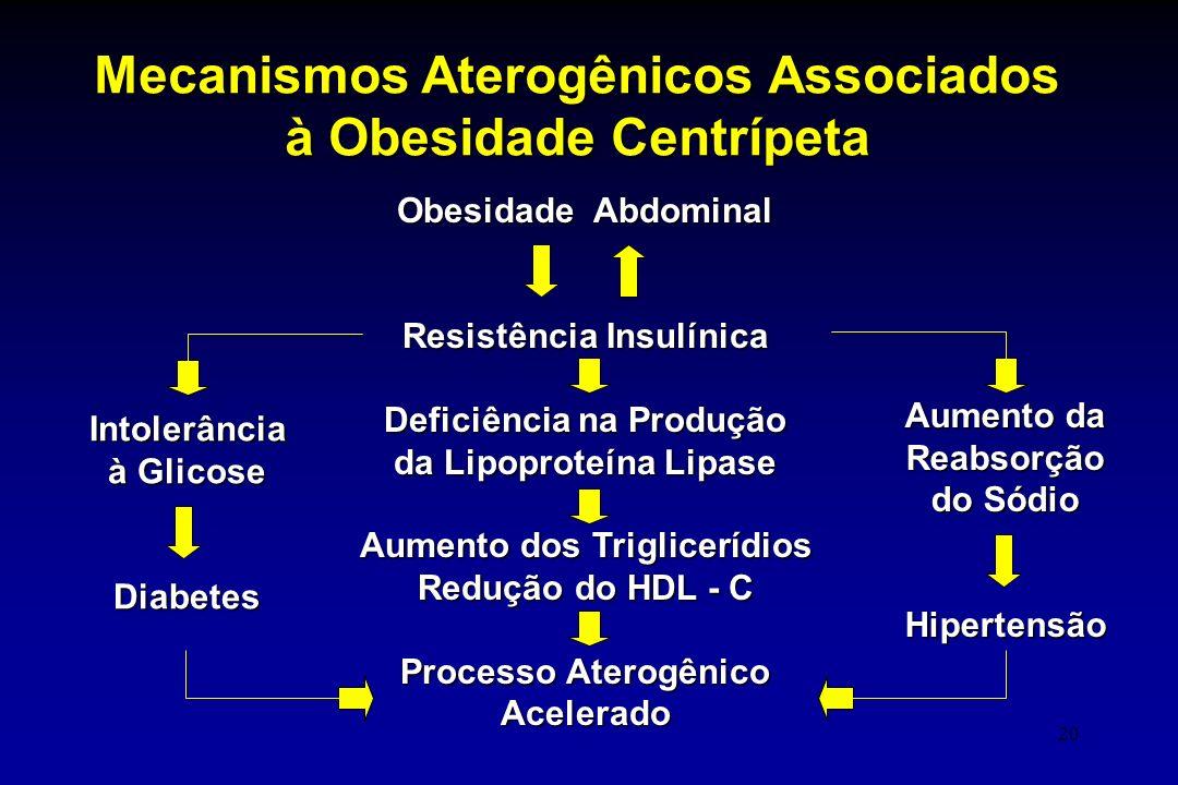 Mecanismos Aterogênicos Associados à Obesidade Centrípeta