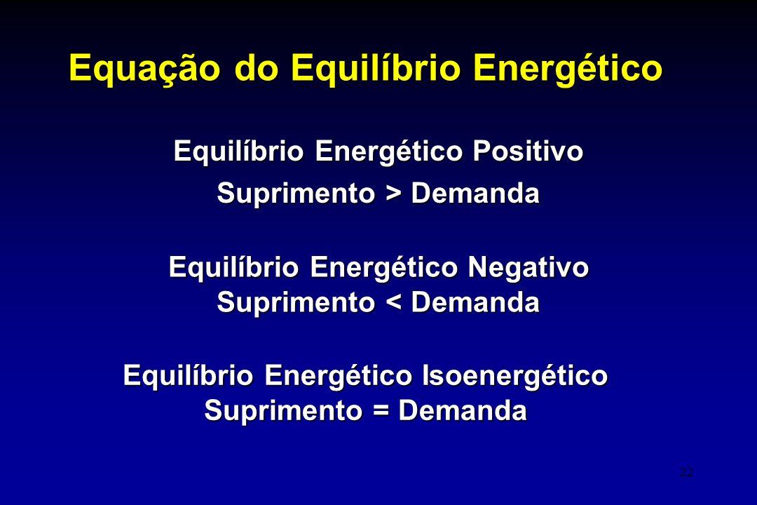 Equação do Equilíbrio Energético