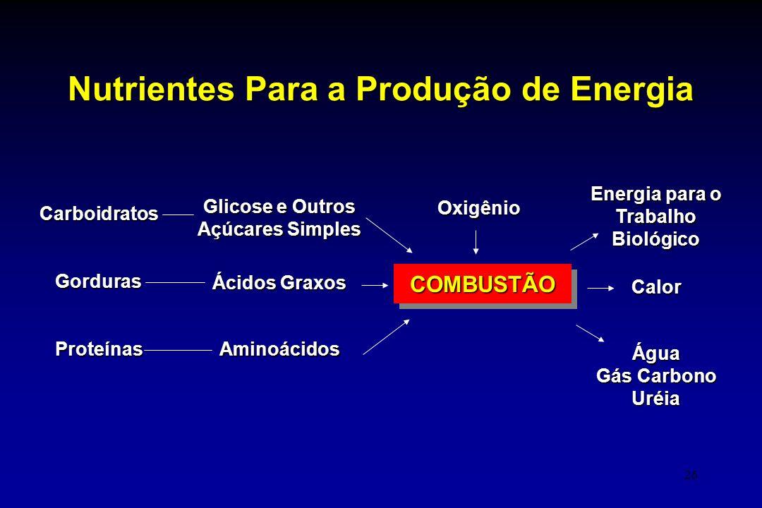 Nutrientes Para a Produção de Energia