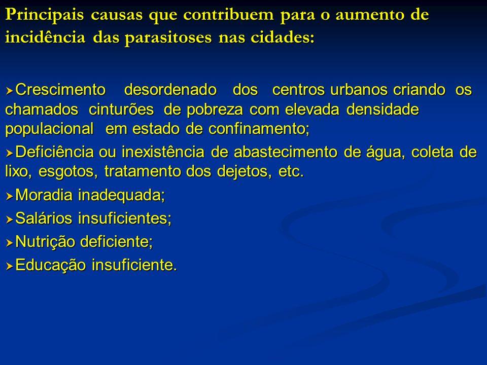 Principais causas que contribuem para o aumento de incidência das parasitoses nas cidades: