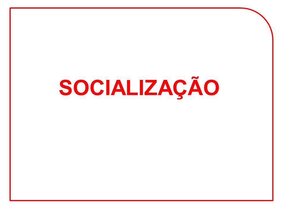 SOCIALIZAÇÃO SOCIALIZAÇÃO