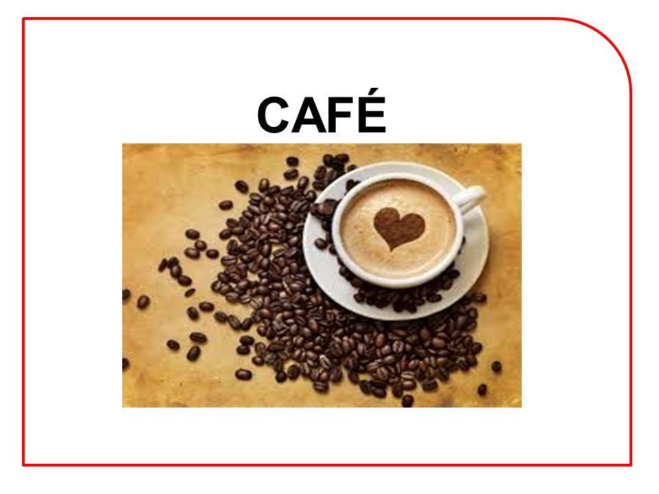 SOCIALIZAÇÃO CAFÉ