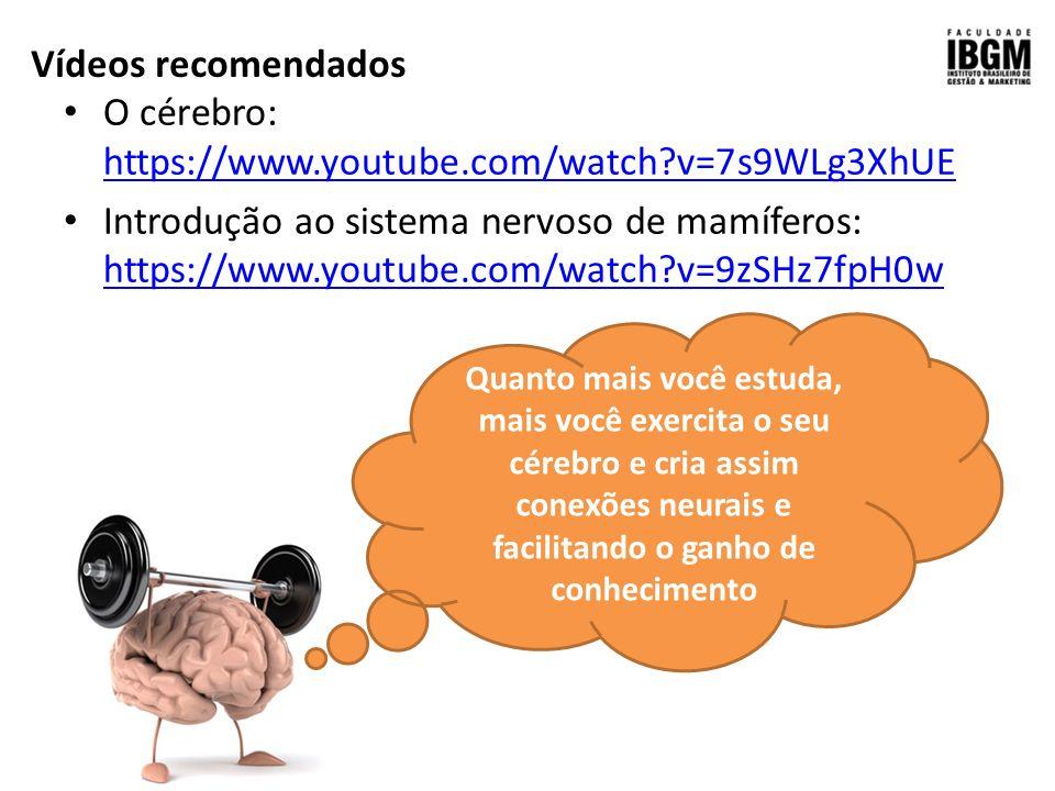 Asombroso Anatomía Vídeos Youtube Motivo - Imágenes de Anatomía ...