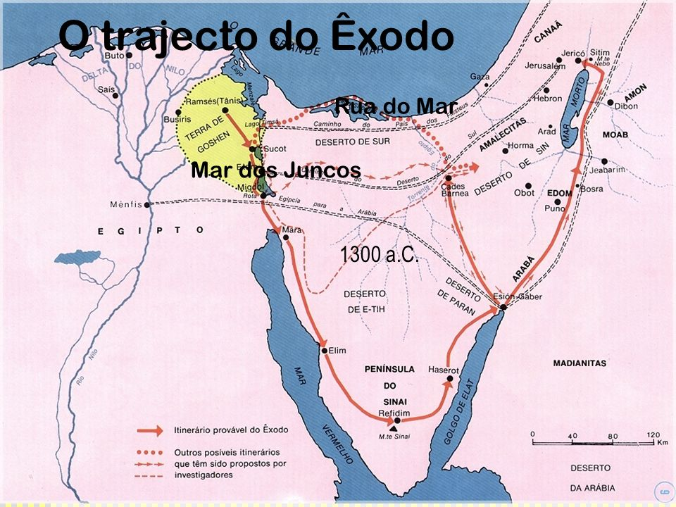 O trajecto do Êxodo Rua do Mar Mar dos Juncos 1300 a.C.