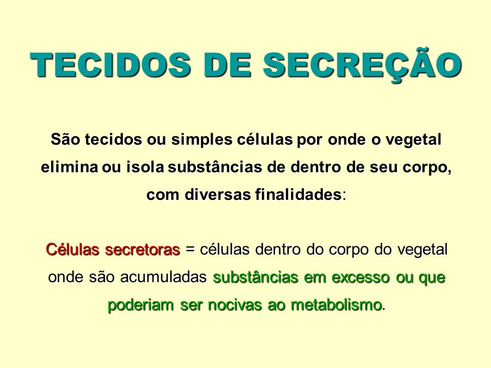 TECIDOS DE SECREÇÃO São tecidos ou simples células por onde o vegetal elimina ou isola substâncias de dentro de seu corpo, com diversas finalidades: