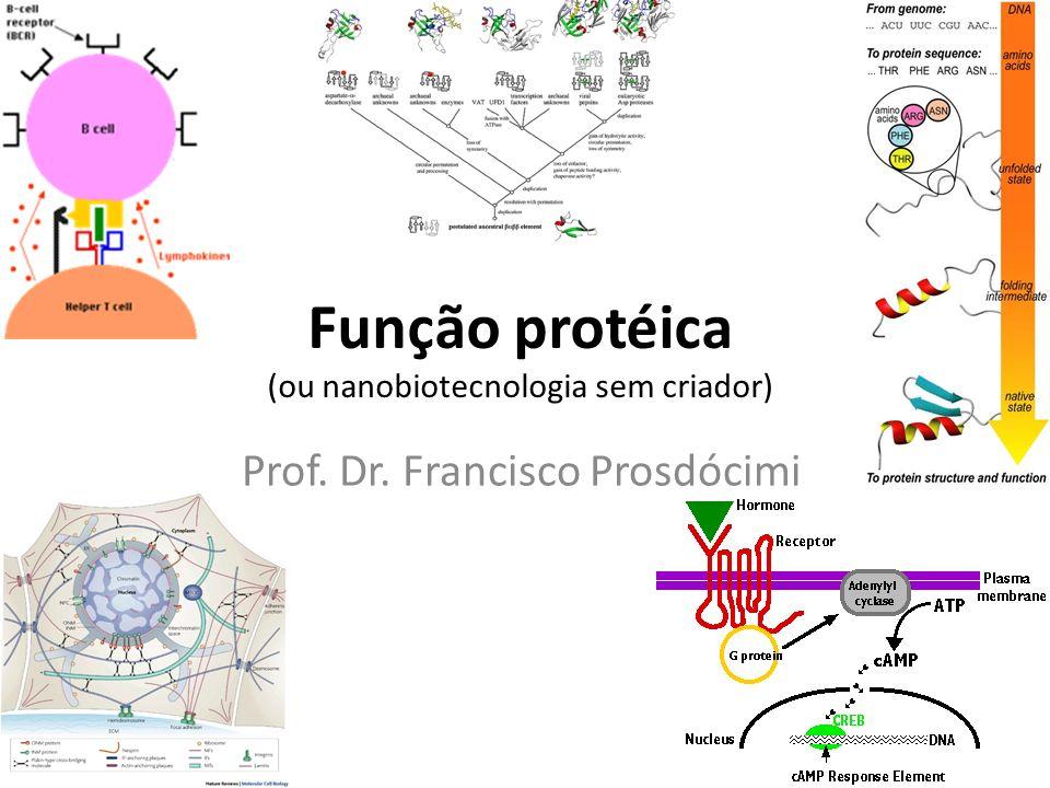 Função protéica (ou nanobiotecnologia sem criador)