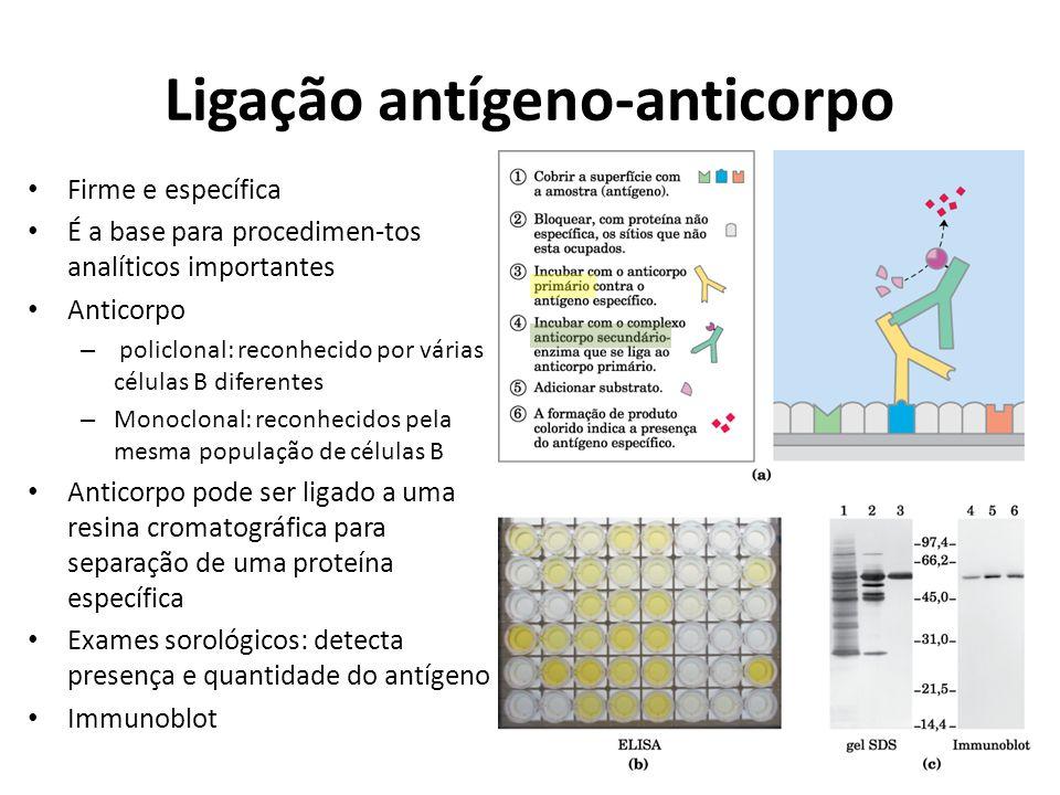 Ligação antígeno-anticorpo