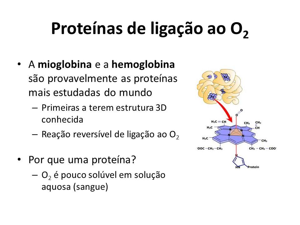 Proteínas de ligação ao O2