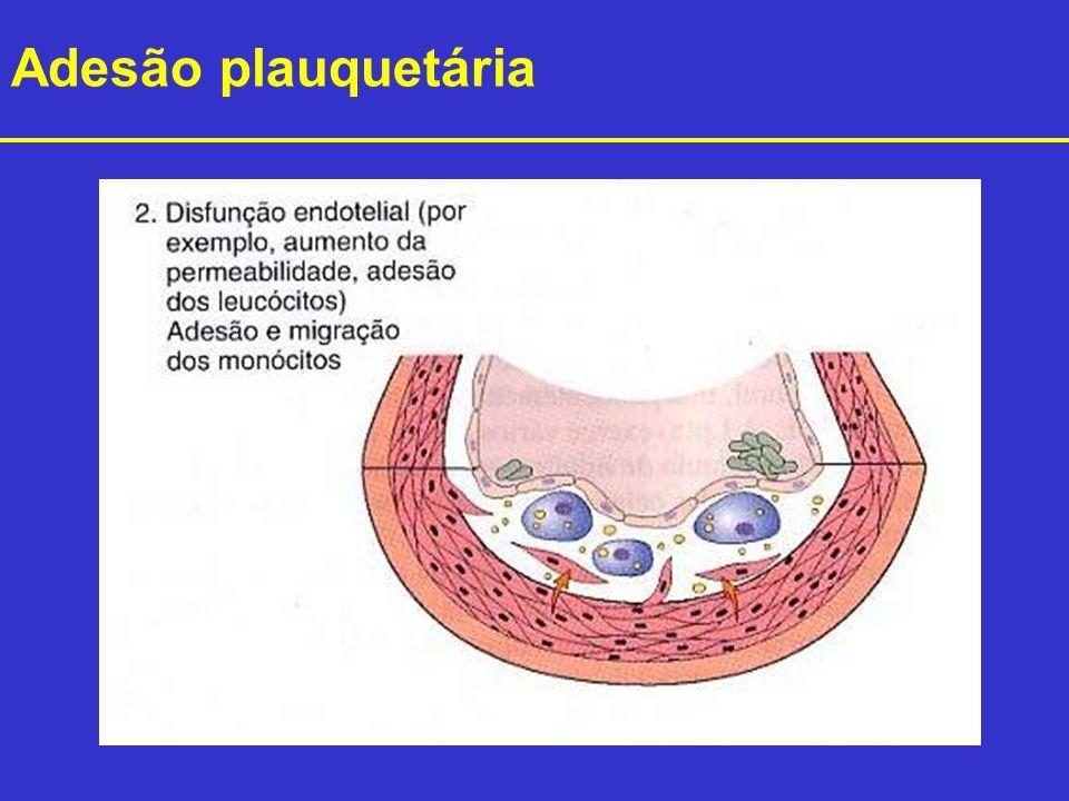Adesão plauquetária