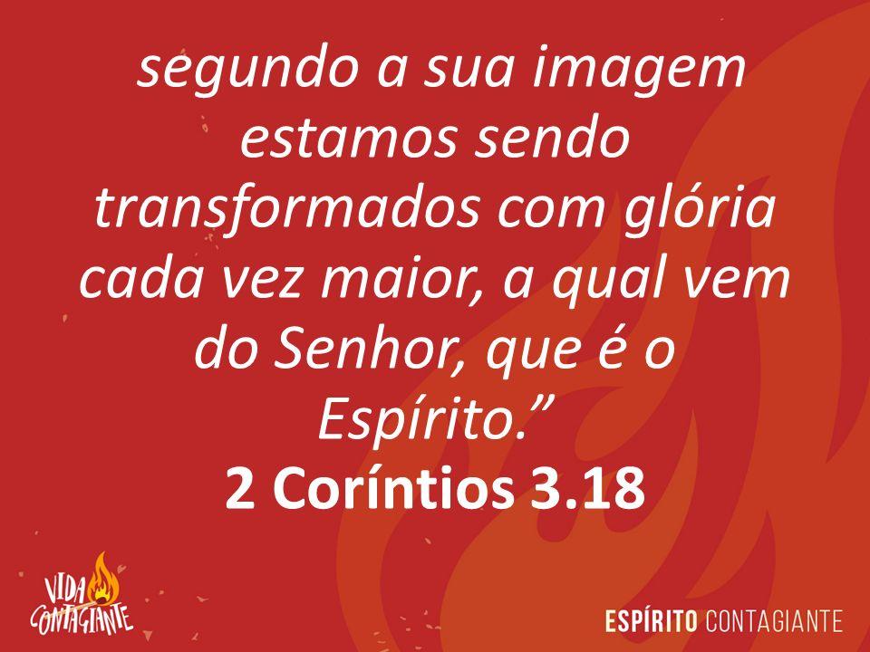 segundo a sua imagem estamos sendo transformados com glória cada vez maior, a qual vem do Senhor, que é o Espírito.