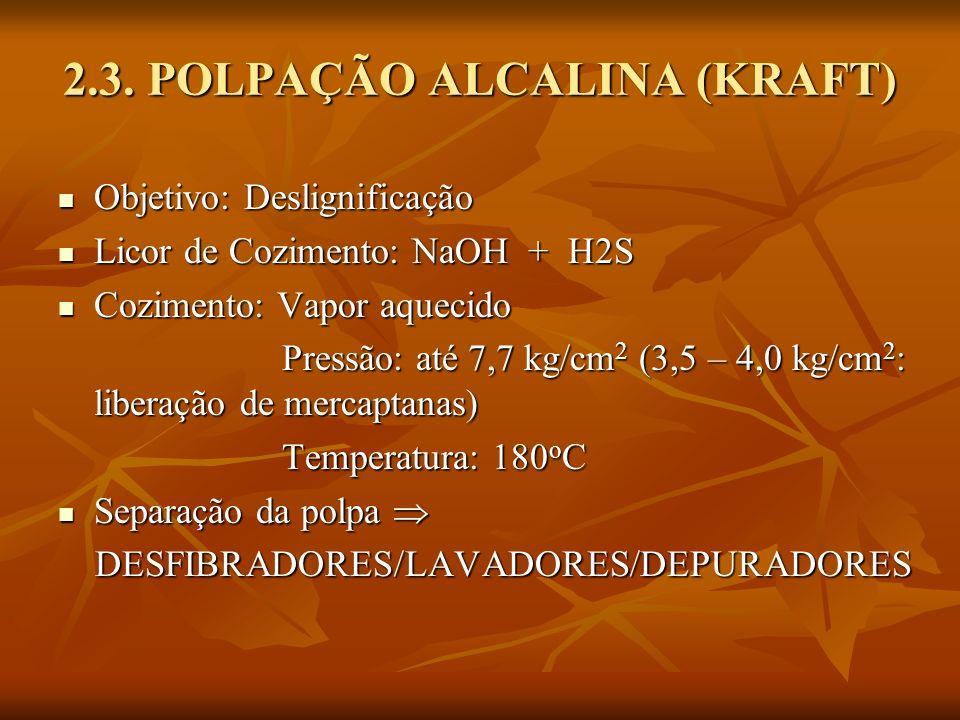 2.3. POLPAÇÃO ALCALINA (KRAFT)