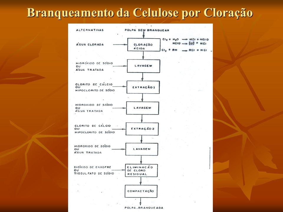 Branqueamento da Celulose por Cloração