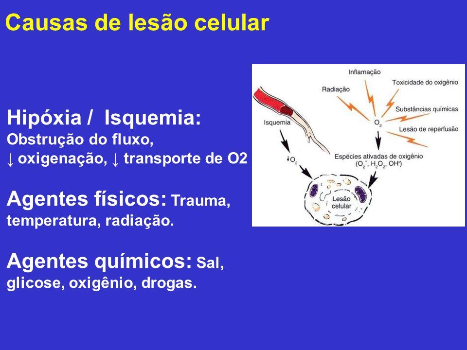 Causas de lesão celular