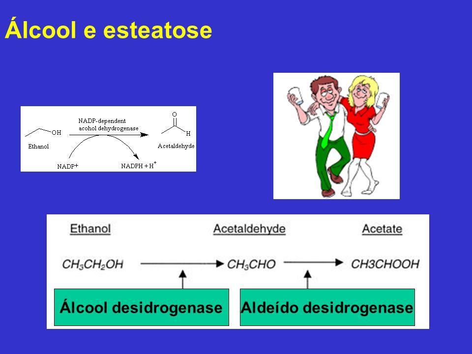 Aldeído desidrogenase