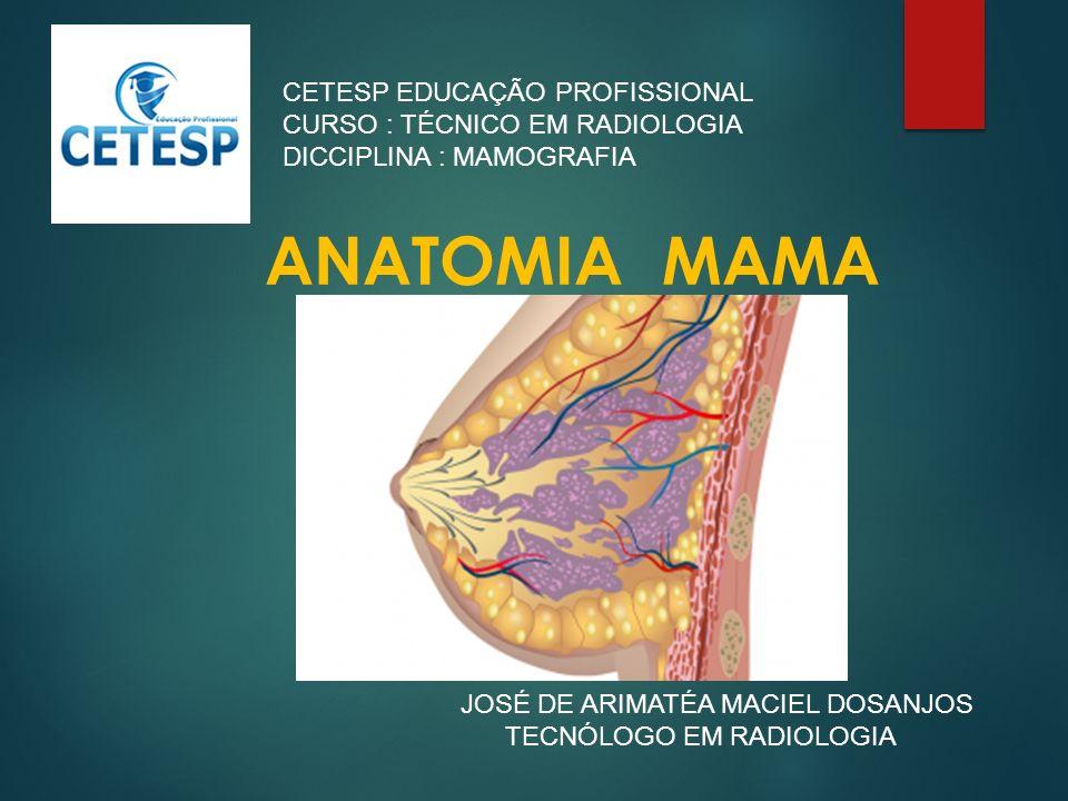 Contemporáneo Anatomía Neta Plc Imágenes - Anatomía de Las ...