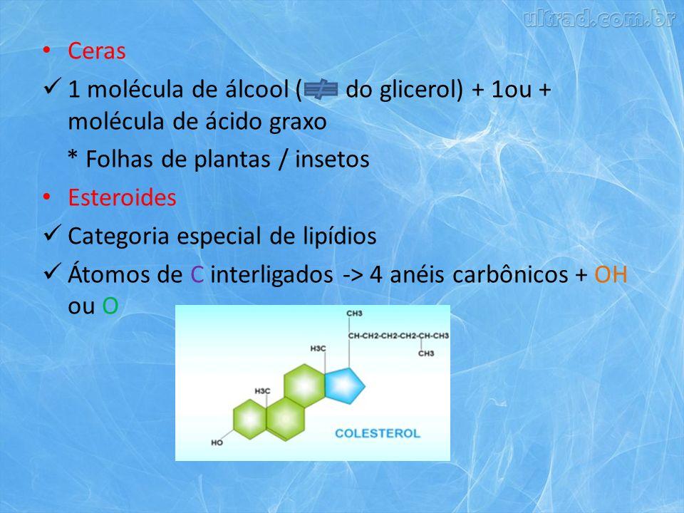 Ceras 1 molécula de álcool ( do glicerol) + 1ou + molécula de ácido graxo. * Folhas de plantas / insetos.