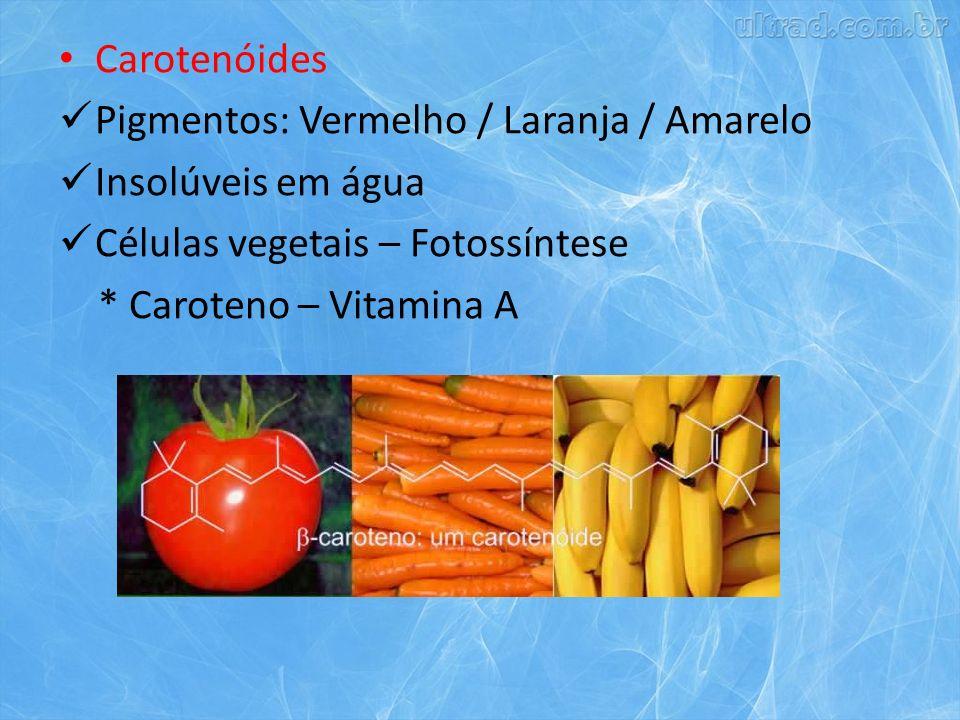 Carotenóides Pigmentos: Vermelho / Laranja / Amarelo. Insolúveis em água. Células vegetais – Fotossíntese.
