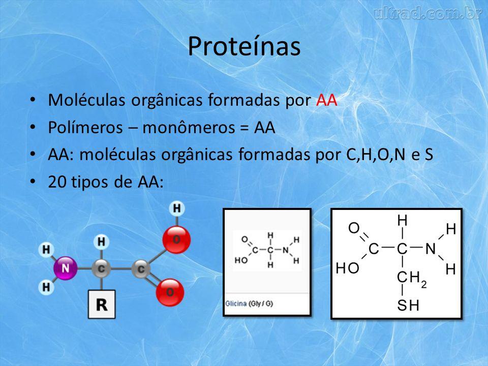 Proteínas Moléculas orgânicas formadas por AA