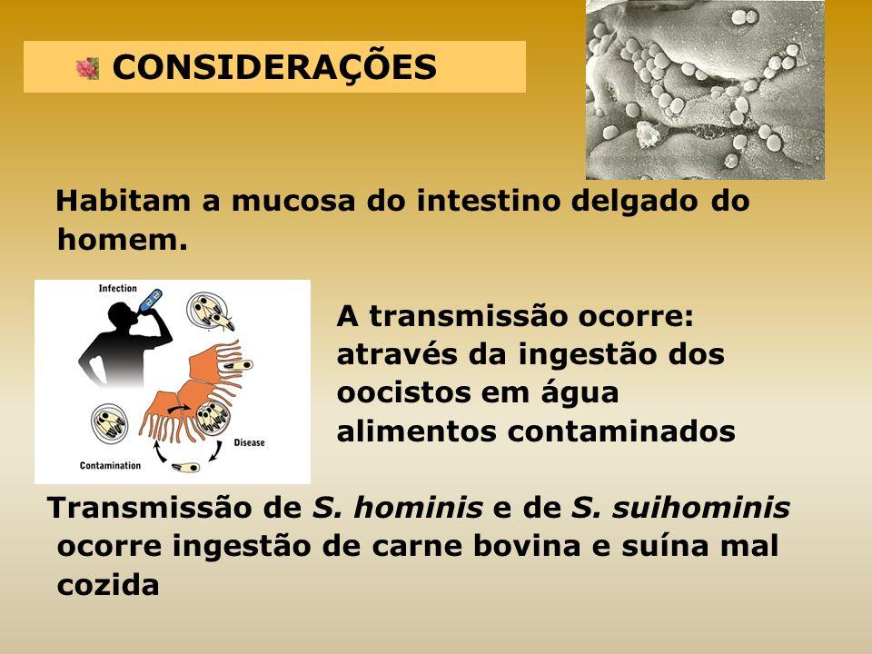 Cryptosporidium hominis diagnostico de necesidades