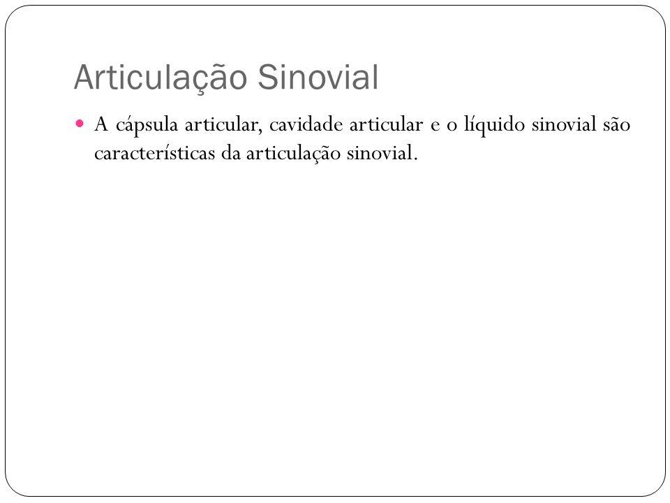 Articulação Sinovial A cápsula articular, cavidade articular e o líquido sinovial são características da articulação sinovial.