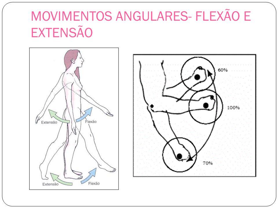 MOVIMENTOS ANGULARES- FLEXÃO E EXTENSÃO