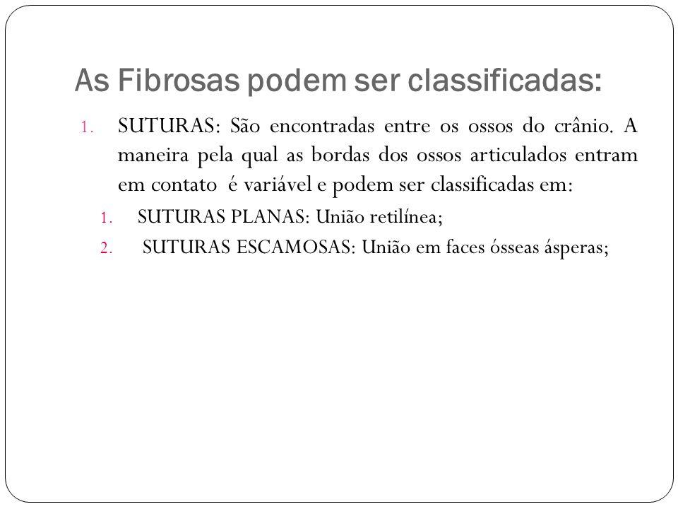 As Fibrosas podem ser classificadas: