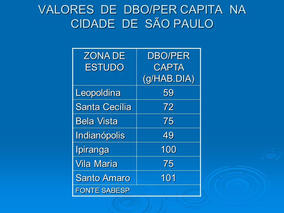 VALORES DE DBO/PER CAPITA NA CIDADE DE SÃO PAULO