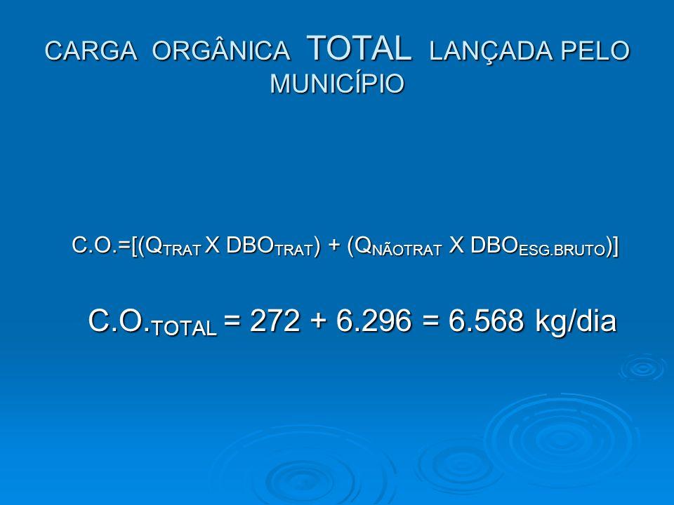CARGA ORGÂNICA TOTAL LANÇADA PELO MUNICÍPIO