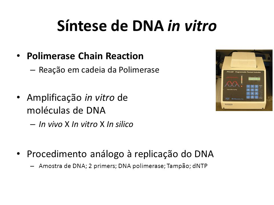 Síntese de DNA in vitro Polimerase Chain Reaction