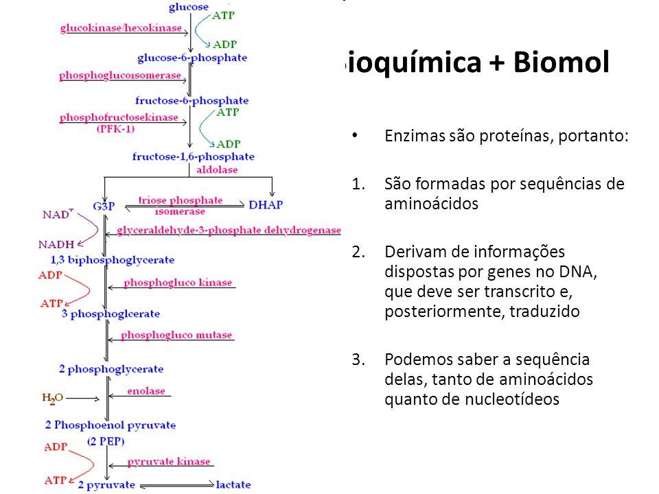 Bioquímica + Biomol Enzimas são proteínas, portanto: