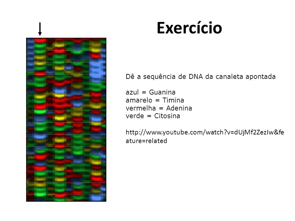 Exercício http://www.youtube.com/watch v=dUjMf2ZezIw&feature=related