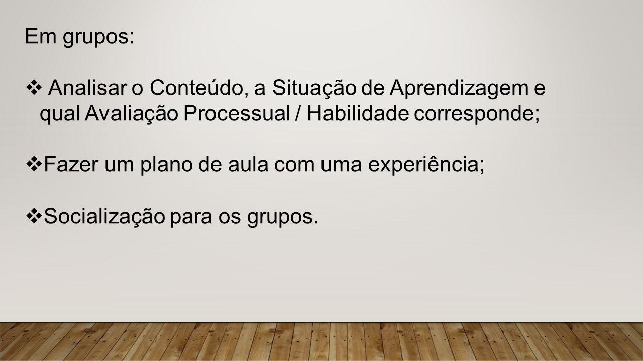 Em grupos: Analisar o Conteúdo, a Situação de Aprendizagem e qual Avaliação Processual / Habilidade corresponde;