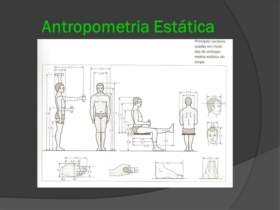 Ergonomia projeto e produ o itiro iida ppt video online for Antropometria estatica