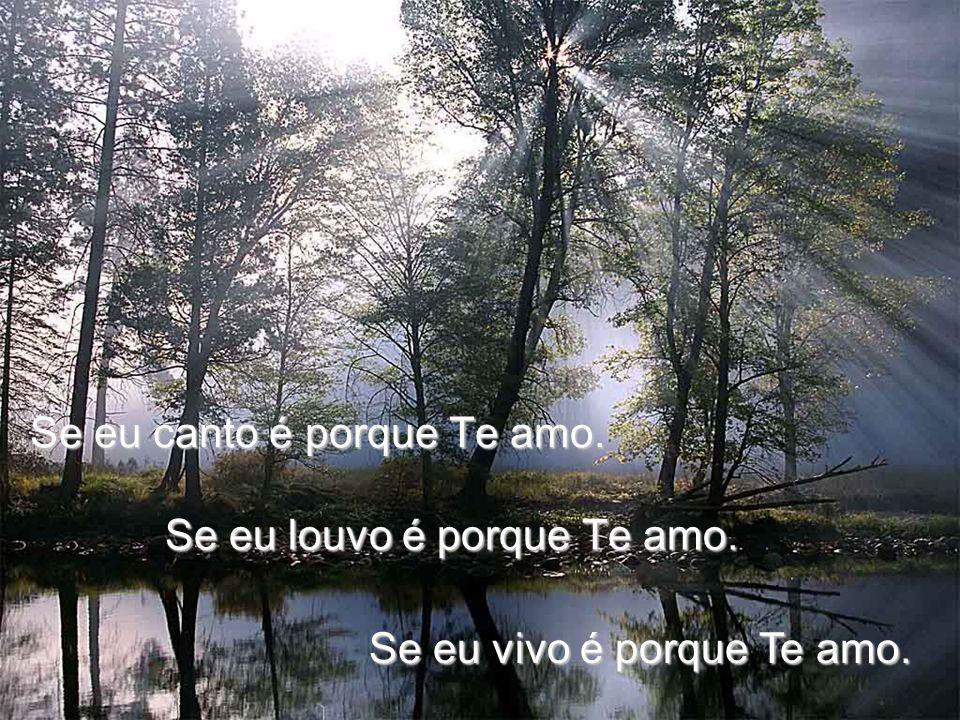 Se eu canto é porque Te amo.