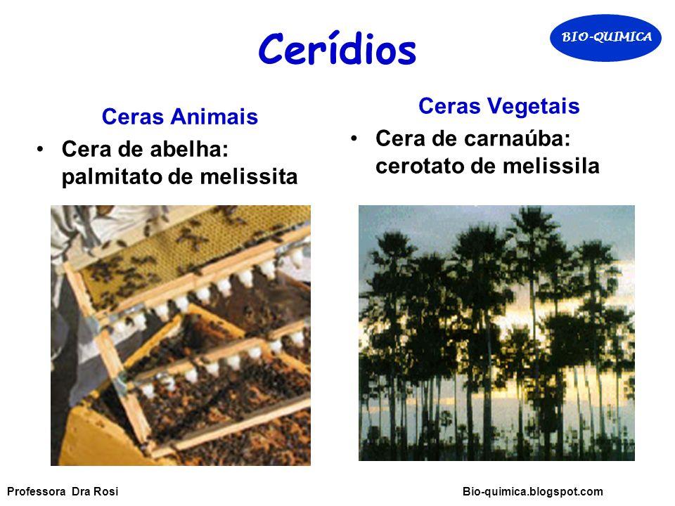 Cerídios Ceras Vegetais Ceras Animais