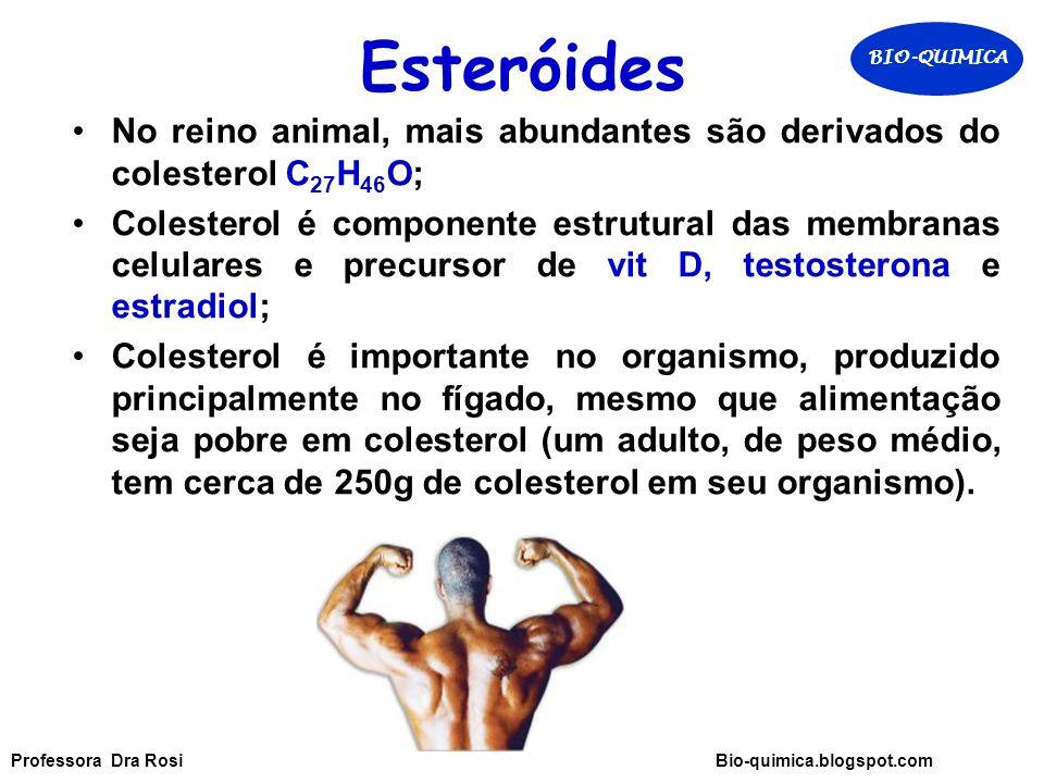 Esteróides BIO-QUIMICA. No reino animal, mais abundantes são derivados do colesterol C27H46O;