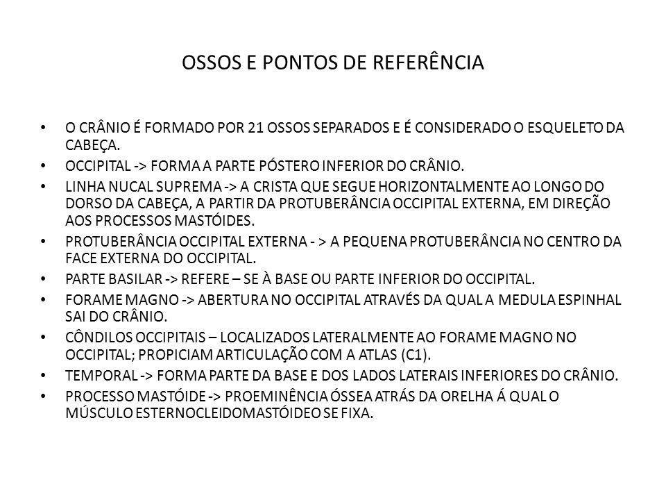 OSSOS E PONTOS DE REFERÊNCIA