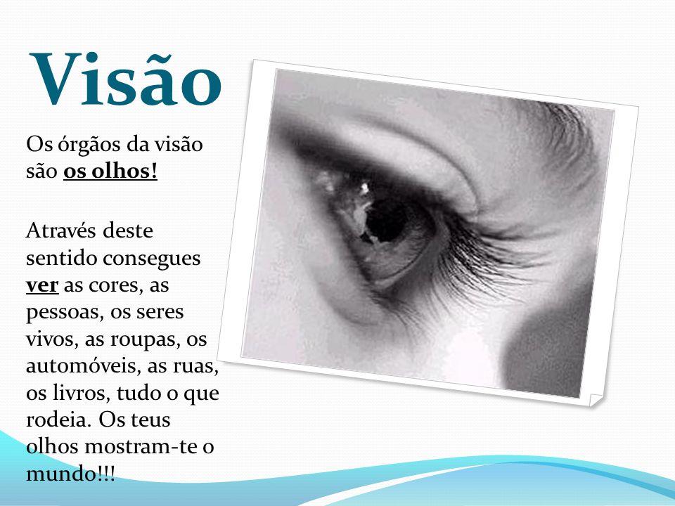 Visão Os órgãos da visão são os olhos!