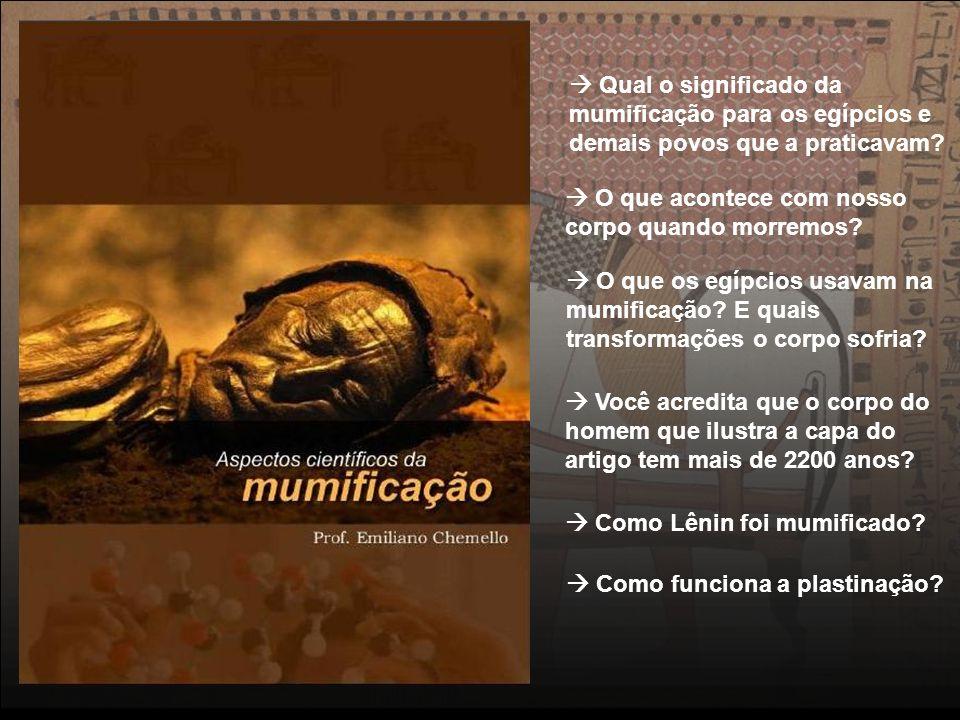  Qual o significado da mumificação para os egípcios e demais povos que a praticavam