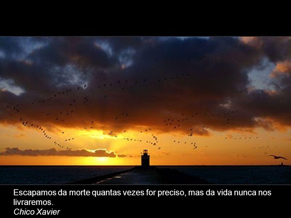 Preferência FRASES ESPÍRITAS. - ppt video online carregar VP42