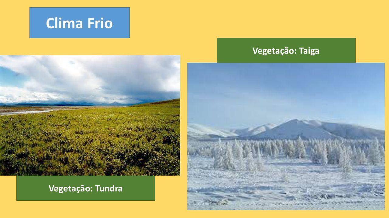 Clima Frio Vegetação: Taiga Vegetação: Tundra