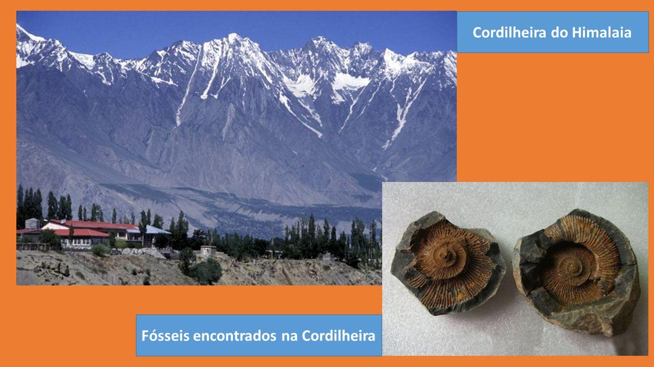 Cordilheira do Himalaia Fósseis encontrados na Cordilheira