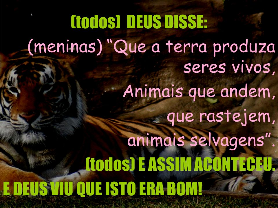 (todos) DEUS DISSE: (meninas) Que a terra produza seres vivos, Animais que andem, que rastejem,
