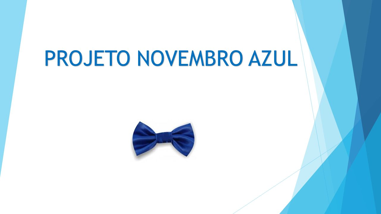 PROJETO NOVEMBRO AZUL