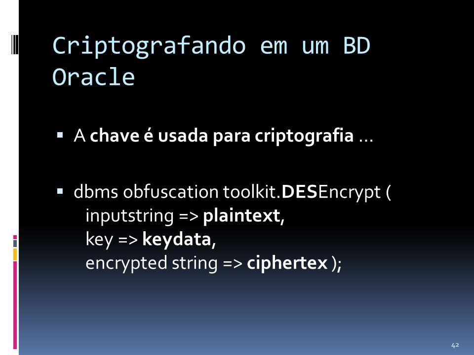 Criptografando em um BD Oracle