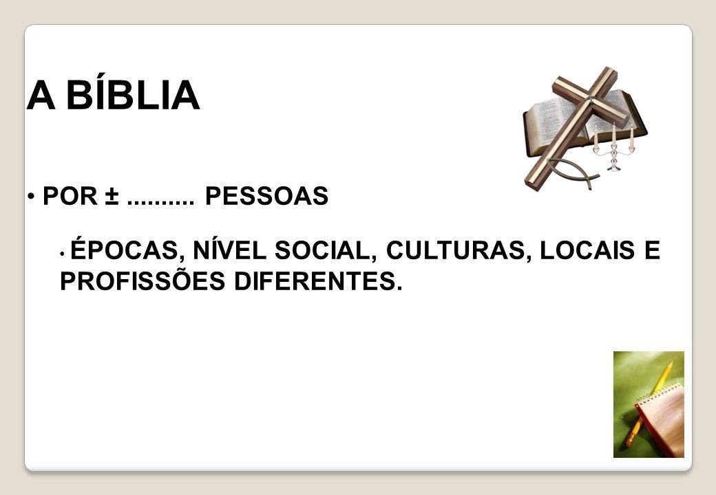 A BÍBLIA POR ± .......... PESSOAS ÉPOCAS, NÍVEL SOCIAL, CULTURAS, LOCAIS E PROFISSÕES DIFERENTES.