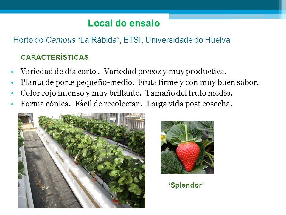 Local do ensaioHorto do Campus La Rábida , ETSI, Universidade do Huelva. CARACTERÍSTICAS.