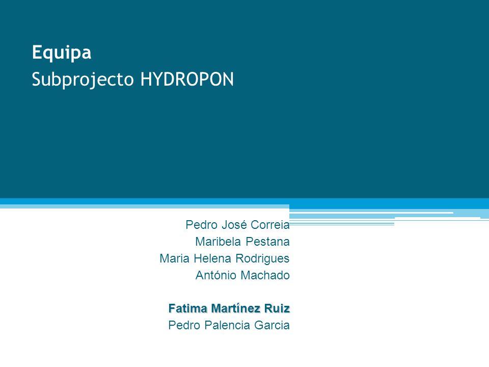 Equipa Subprojecto HYDROPON Pedro José Correia Maribela Pestana